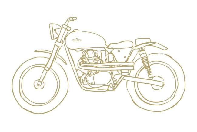 projetw650-gold